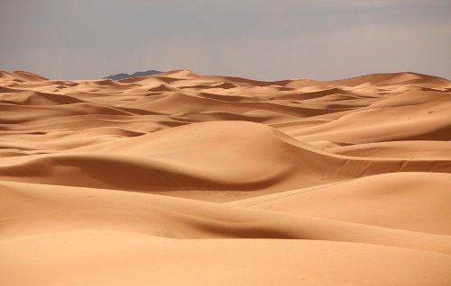 Сахара - океан песка